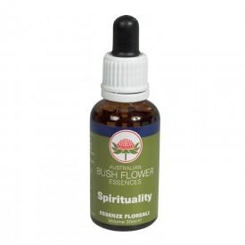Spirituality (30ml gocce)