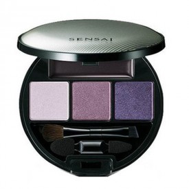 Eye Shadow Palette - ES 11 BENIFUJI