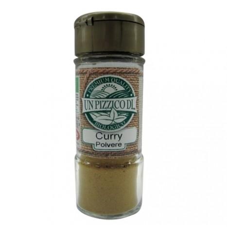 Curry in Polvere Bio