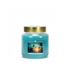 Tropical Daydream Giara Media Goose Creek Candle